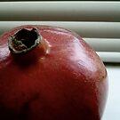 Pomegranate III by geikomaiko