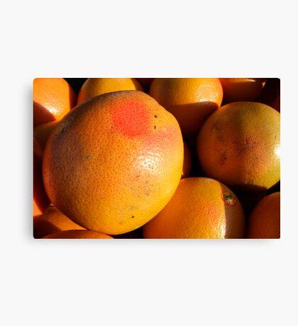 Grapefruit Canvas Print