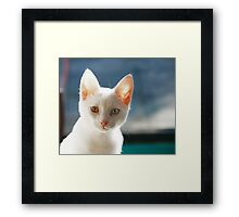 jules december Framed Print