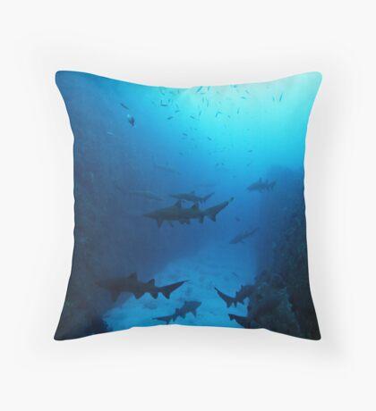 Shark Country Throw Pillow