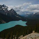 Peyto Lake by Brendan Schoon