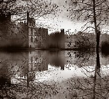 Medieval Reflections by Varinia   - Globalphotos