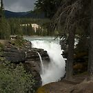 Athabasca Falls by Brendan Schoon