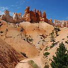 Hiking Trail by Brendan Schoon
