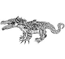 Lizard Photographic Print