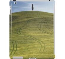 cypress iPad Case/Skin