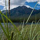 Jasper National Park, Pyramid Lake by Brendan Schoon