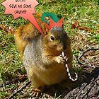 SCREW THE NUTS!!!! by Elizabeth Burton
