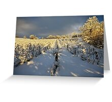 Snow and sun on the french vineyard Greeting Card