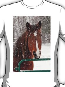Horse In Snow Storm T-Shirt