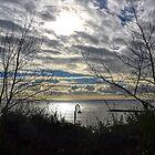 Lyme ,Dorset, UK 2015-03-03 by lynn carter