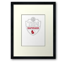 team solomid Framed Print