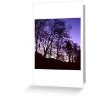 Untitled 14 Greeting Card