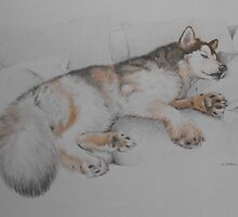 What an Alaskan Malamute Does Best by PurpleMoose