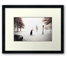 Lady walking through Central Park in snowstorm Framed Print