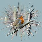 Robin by lynn carter