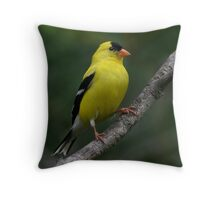 Male Yellow Finch Throw Pillow