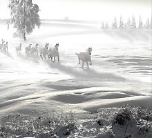 White Spirit by Igor Zenin