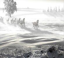 White Spirit by Igor Zenin