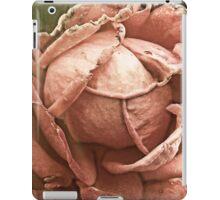 Old rose - Faded romance iPad Case/Skin