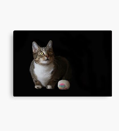 Maggie and her toy Canvas Print