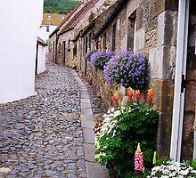Cobbled Street by Braedene