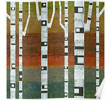 Birches with Blue and Orange Poster