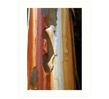 Peeling Paint 19 Art Print