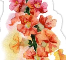 beautiful illustration of Hand Painted flower Wild  Sticker