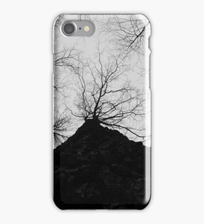 Up A Tree iPhone Case/Skin