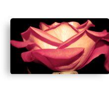 peeling petals - pretty pink Canvas Print