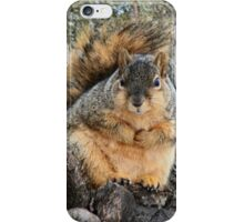I'm not fat! This is winter fur! iPhone Case/Skin