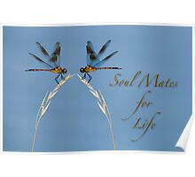 Soul Mates for Life!  Poster