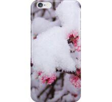Triumph! iPhone Case/Skin