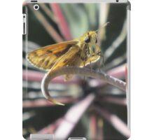 Skipper Butterfly on Fishhook Barrel Cactus Spine iPad Case/Skin