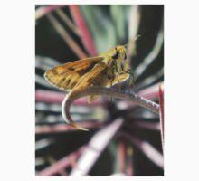 Skipper Butterfly on Fishhook Barrel Cactus Spine Kids Tee