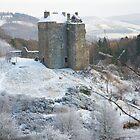 Neidpath Castle Near Peebles Scotland by DonDavisUK