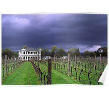 Moody Vineyard Poster