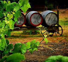"""Vine to Vintage"" by Phil Thomson IPA"