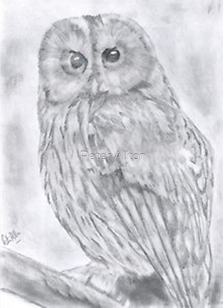 Wise one. by Peter Allton