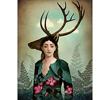 Forest Warrior Photographic Print