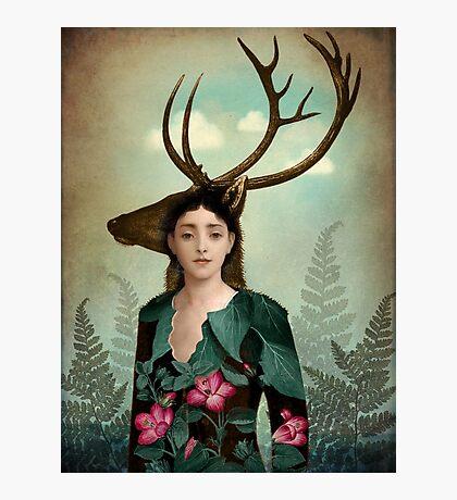 Forest Warrior Photographic Print