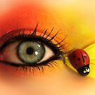 Ladybug Eye by Katherine Davis