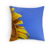Sun baking Throw Pillow