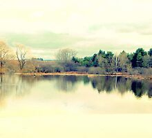 Serenity of the lake by Karen Cook