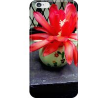 Red Cactus Flowers, Top Step iPhone Case/Skin