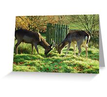 Whos going to make the first move? Greeting Card