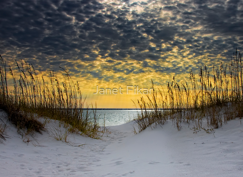 Sunlit Passage by Janet Fikar