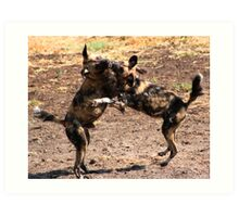 African Wild Dogs Playing Art Print