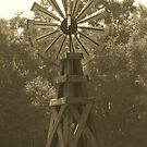 Windmill by randi1972